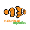 Maidenhead Aquatics Logo